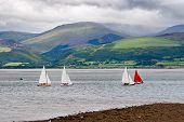foto of anglesey  - Sailboats competition in Anglesey - JPG