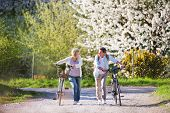 Beautiful Senior Couple With Bicycles Outside In Spring Nature Walking Under Blossoming Trees. poster