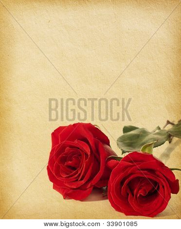 old paper textures with  two red roses