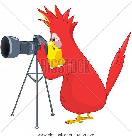Cartoon Character Funny Parrot Isolated on White Background. Photographer. Vector EPS 10.
