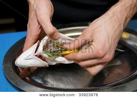 Chef is stuffing dorade fish with herbs