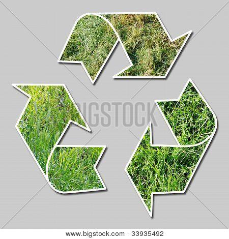 Recicl o sinal com grama