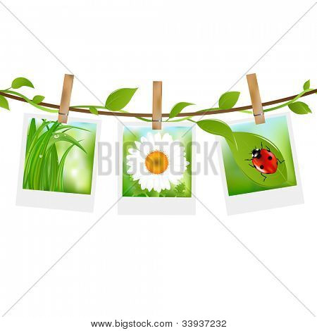 Summer Photos With Clothespins, Isolated On White Background