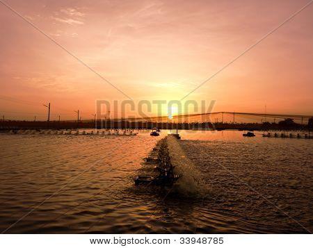 Sunset Over Shrimp Pond