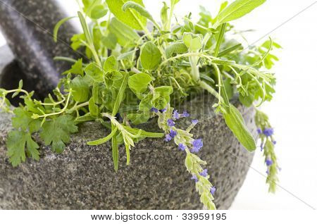 granite mortar with fresh herbs