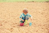 Little Boy Planting Flower In Field. Fun Time At Farm. Happy Childhood Concept. Little Helper In Gar poster