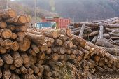 Logging Truck Sitting On Mountain Road Behind Large Pile Of Cut Logs. poster