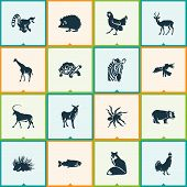 Fauna Icons Set With Antelope, Giraffe, Turtle And Other Primate Elements. Isolated Vector Illustrat poster