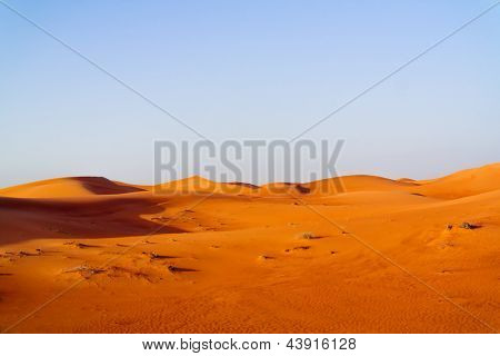 desert dune background on blue sky. Arabian desert  near the city of Dubai. very bright and beautiful desert
