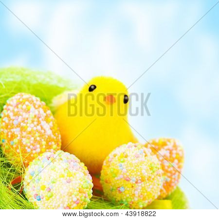 Beautiful Easter still life outdoors over blue sky, traditional decorated eggs with small chick in the nest