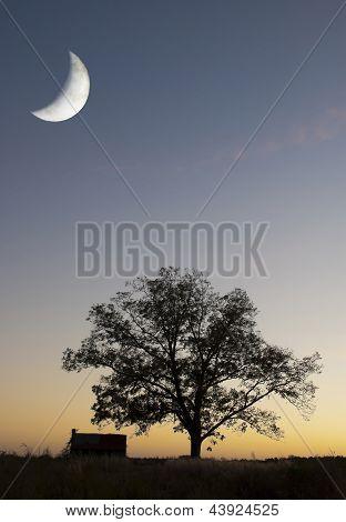 Sc Sunset Moon