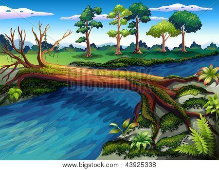 Illustratie van een boom met algen in de rivier