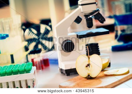 Chemical Laboratory of the Food supply / control the amount of nitrates, herbicides and pesticides