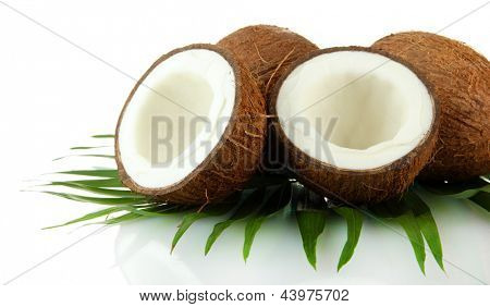 Coconuts with leaves, isolted on white