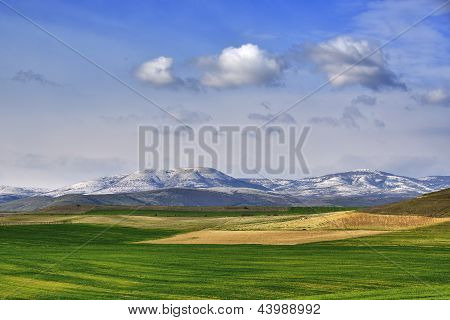Field in spring from Macedonia