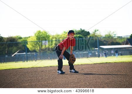 Baseball Player In Ready Position