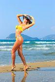 stock photo of bimbo  - Beautiful young blonde fit woman in bikini on the beach - JPG