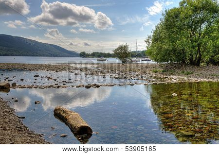 Log on the shore of Coniston Water