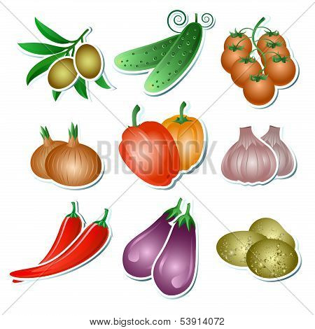 Set of vector vegetables stickers