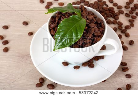 cup of coffee with green leaves of coffee