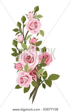 Vintage pink roses branch. Vector illustration.