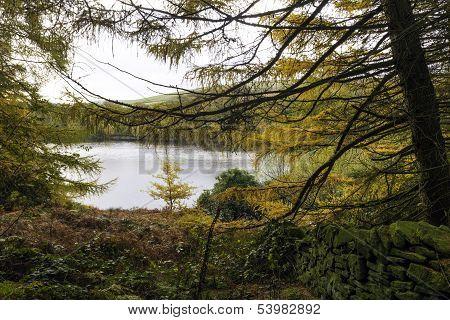 Autumn At Digley Reservoir