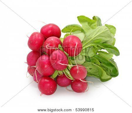 red radish isolated on white background