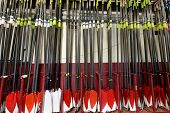 stock photo of work crew  - Crewing Oars - JPG
