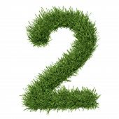 picture of arabic numerals  - Arabic numeral made of grass - JPG