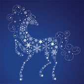 stock photo of hieroglyph  - Horse of Snowflakes - JPG