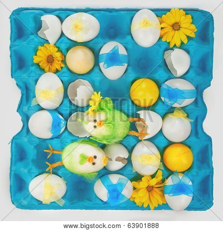 Colorful easter eggs with poults in tray on white background