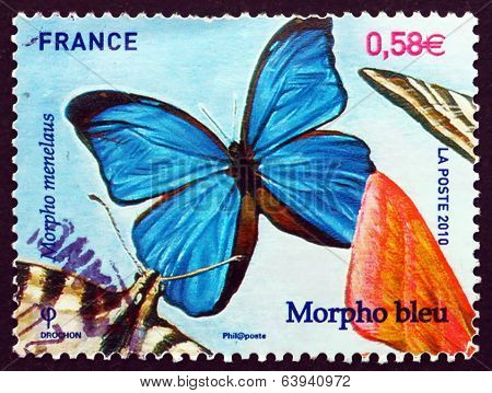 Postage Stamp France 2010 Menelaus Blue Morpho, Butterfly
