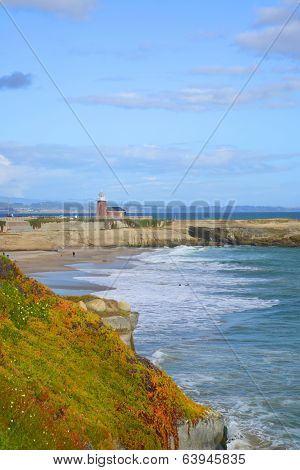 View of the shore line of Santa Cruz.