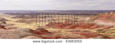 Red Desert Panorama On A Cloudy Day