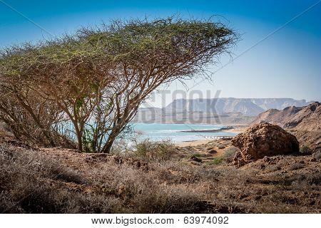 Queshm landscape