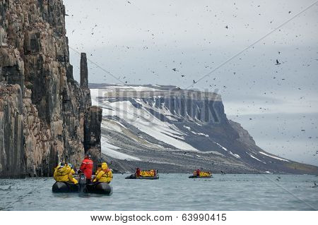 Svalbard, Norway - July 2013: Sightseeing in Alkefjellet, Svalbard