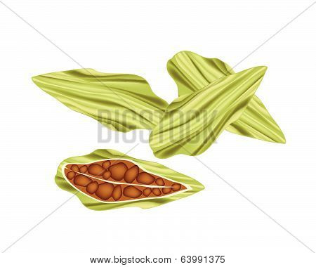 Whole And Half Of Fresh Cardamom Pods