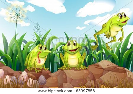 Illustration of the three frogs above the rocks