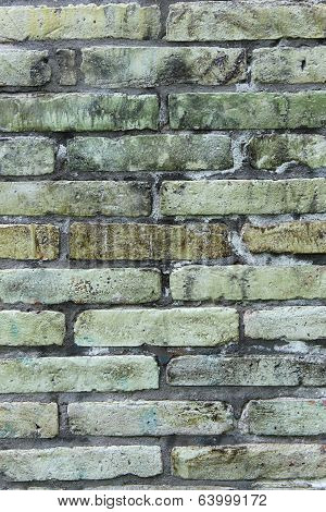 Green and Gray Brick Wall