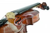 stock photo of g-string  - The violin bridge closeup isolated on white background - JPG