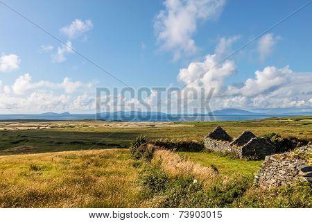 Pastureland And Ruin