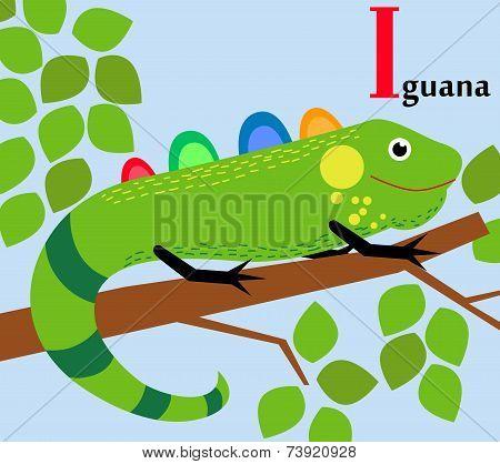Animal alphabet for the kids:  I for the Iguana