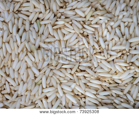 Glutinous Rice Grain Background