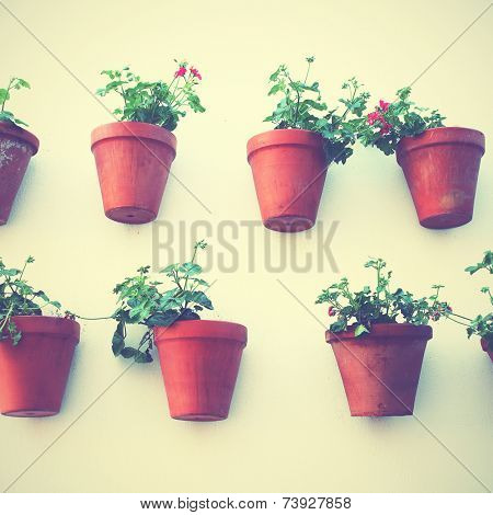 Wall of house with flowerpots in Spain. Instagram style filtred image