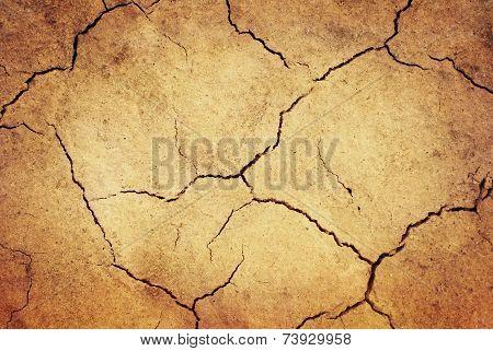 Grunge Dried Ground