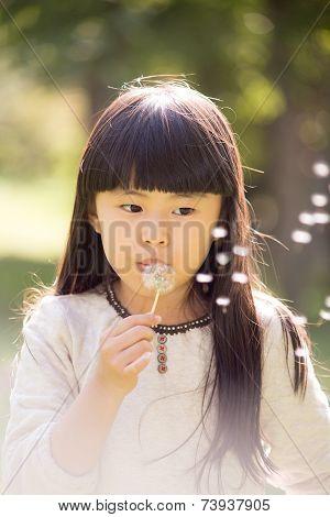 The Girl Blowing Dandelion