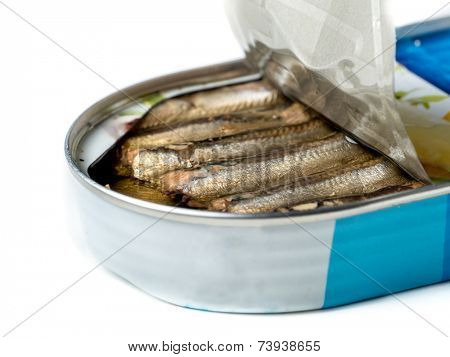 Open can of smoked sprats shot on white