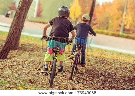Two little boys riding bicycles in the park