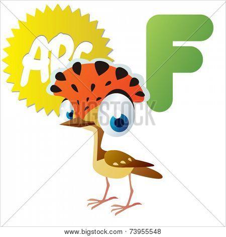 F is for Flycatcher Bird