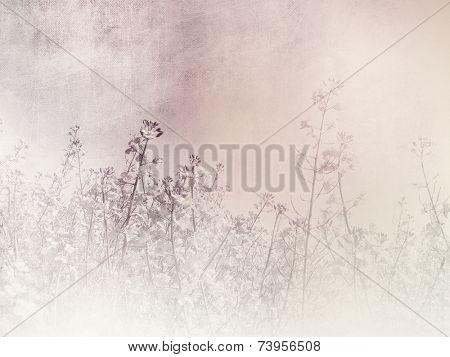 Romantic background - vintage field landscape